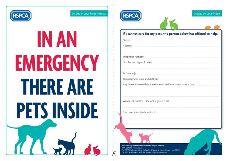RSPCA urges owners to make a pet care plan