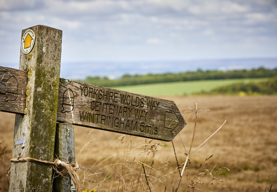 You are currently viewing Yorkshire Wolds proposed for Area of Outstanding Natural Beauty